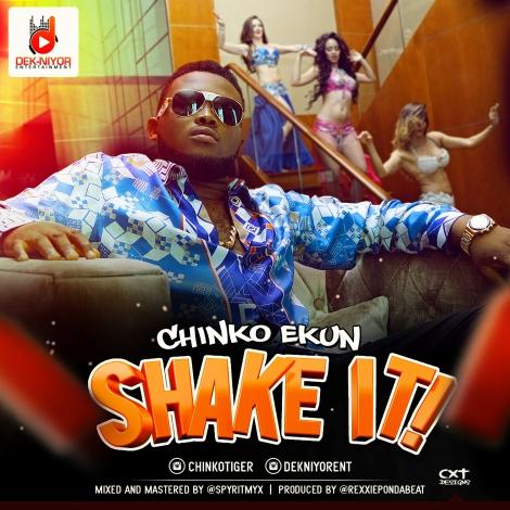 Chinko-Ekun-SHAKE-IT-Song-Art.jpg