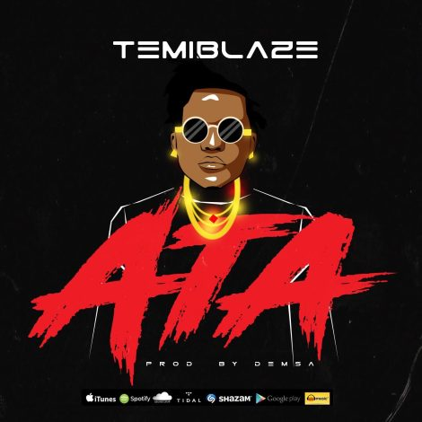 TemiBlaze